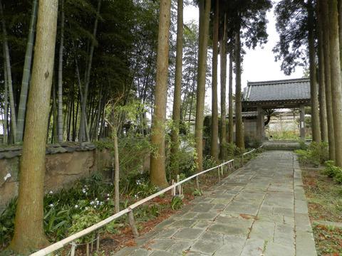 ②76養徳寺