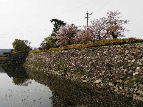 ①37中津城石垣左
