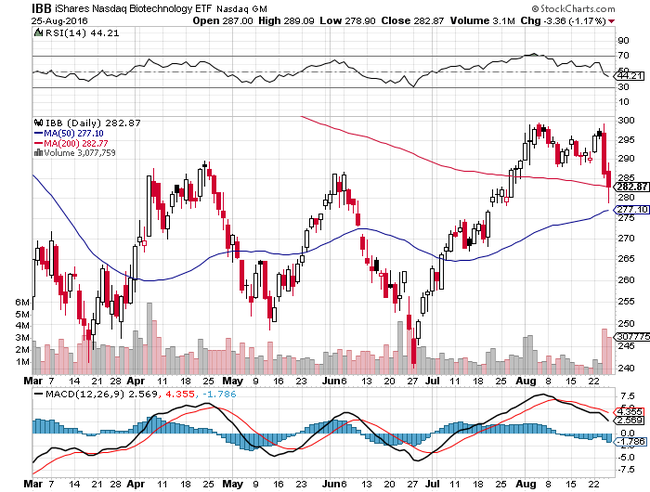 iShares NASDAQ Biotechnology Index(IBB)