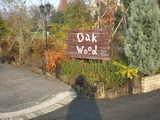 2006/12_OAKWOOD1