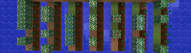 鉱石の栽培