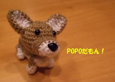 popoちゃん
