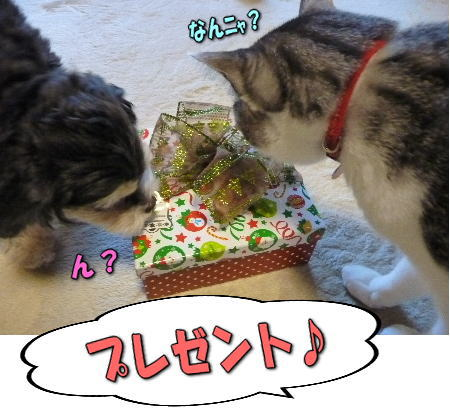 2プレゼント