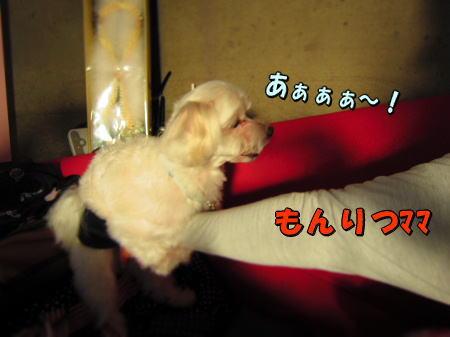 4空ちゃん
