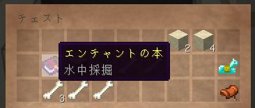 2019-02-21_17.13.40ピラミッド