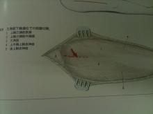 ab51a9a1.jpg