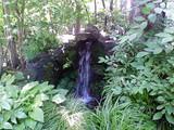 水と緑のお庭
