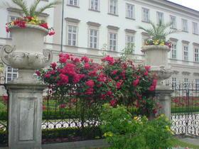 薔薇園の入り口