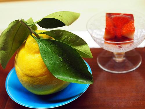 三宝柑のゼリーと苺