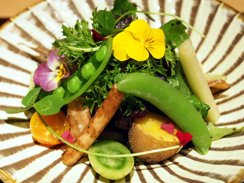 20種のお野菜と塩昆布サラダ