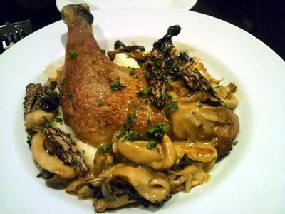 ホロホロ鶏と茸のクリーム煮