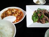 麻婆豆腐もついてきます