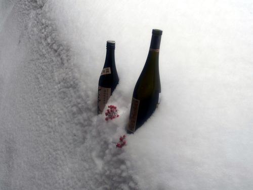 雪の冷蔵庫