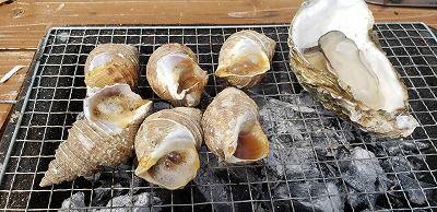 ツブと牡蠣