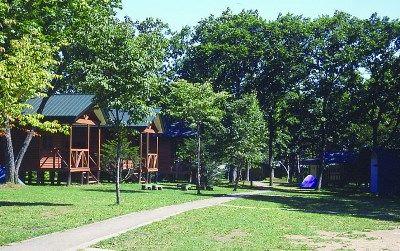 森林公園-715x448