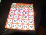 071027バスツアー打ち上げ�ビンゴゲームの台紙