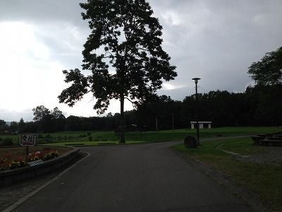 写真 2013-08-24 14 30 34