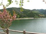 河内ダム2