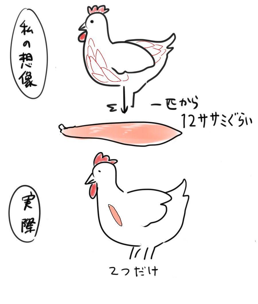 1羽の鶏から取れるササミの本数wwwwwwwwwww