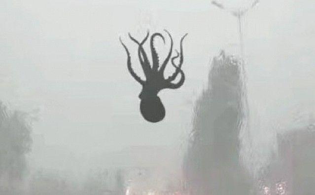 【速報】中国の豪雨がヤバい。空からタコやエビなど海鮮が降る事案が発生