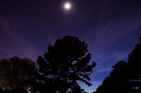 この時期の夜の外の空気好きな奴wwwwwwwww