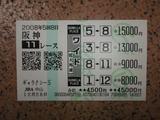 阪神11.JPG