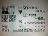 101003_1650591.jpg