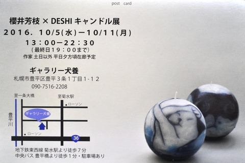 DSC_3245