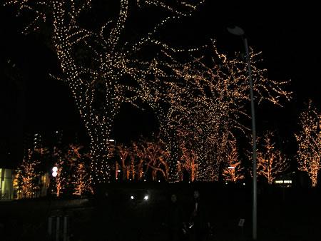 ミッドタウンのクリスマス4