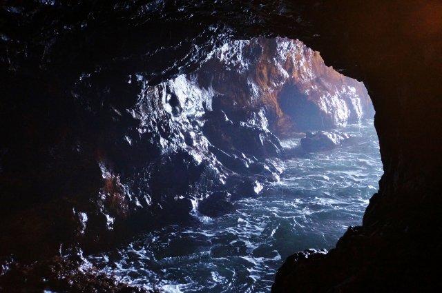 【悲報】サッカー少年ら13人「洞窟探検するンゴwwww」→結果・・・