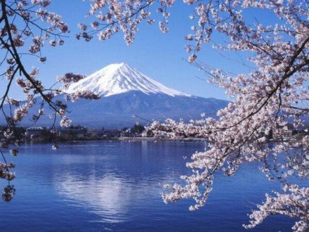 Fuji-in-Japan-440x330