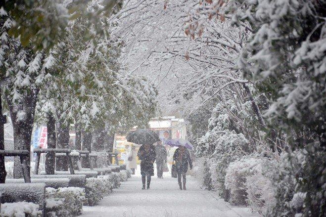 OB-VZ341_snow4_H_20130114201717