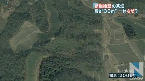 京都茶畑問題-2005年
