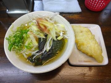 おにやんま@青物横丁 (3)茄子の煮びたし涼風うどん580ホキ天260