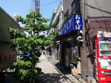 ゆで太郎東品川店@青物横丁(1)山海とろ味冷480