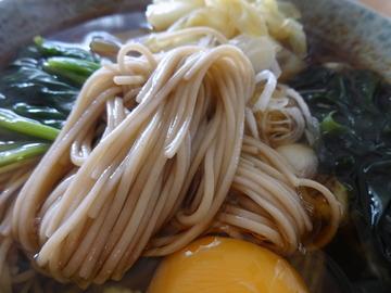 山本食品@長野県(6)更科そば238ビッグヨーサン