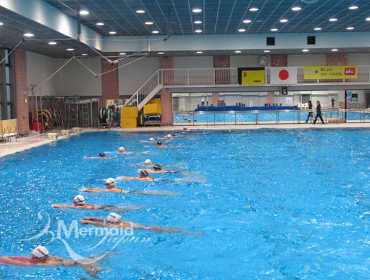 pool basic