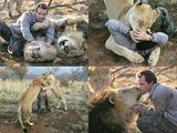 lion_whisper00