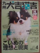 犬吉猫吉表紙1