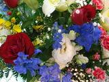 こんなに美しいお花が・・・・
