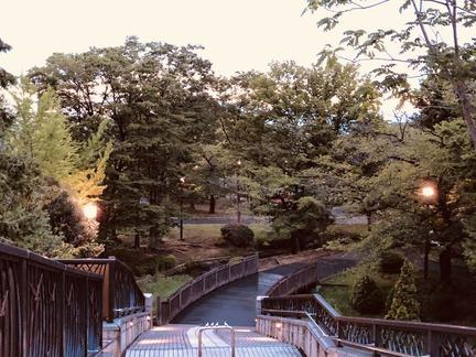 6時28分東綾瀬公園