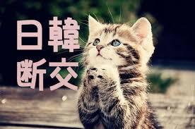 日韓断交ネコ