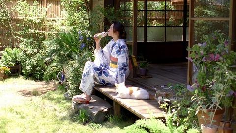 【エンタメ画像】ガッキー浴衣姿にネコもくぎ付け? … 新垣結衣 7年連続「十六茶」CM出演