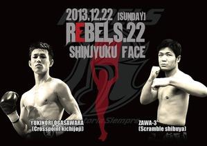 20131222ogasawarayukinori-zawasann