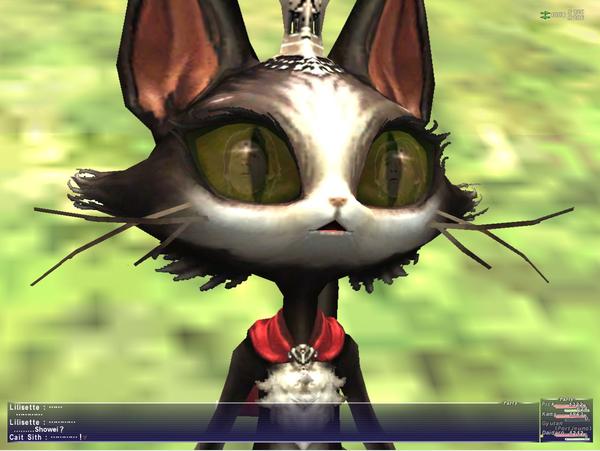 突然ヴァナ・ディールに降臨してネコに驚かれている照英の画像ください
