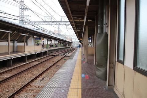 IMG_7975