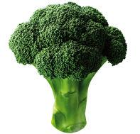 dom_broccoli_img_01