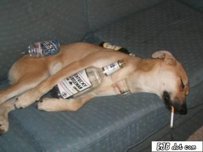 drunkdog