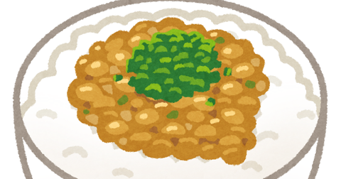 food_nattou_gohan