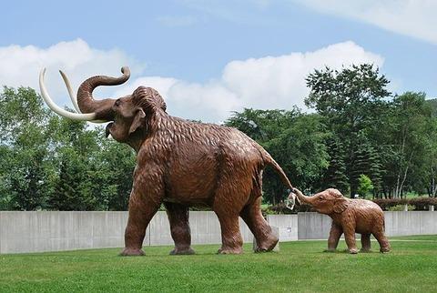 忠類ナウマン象記念館_ナウマン象親子の生体復元模型